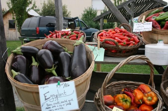 Beautiful eggplant